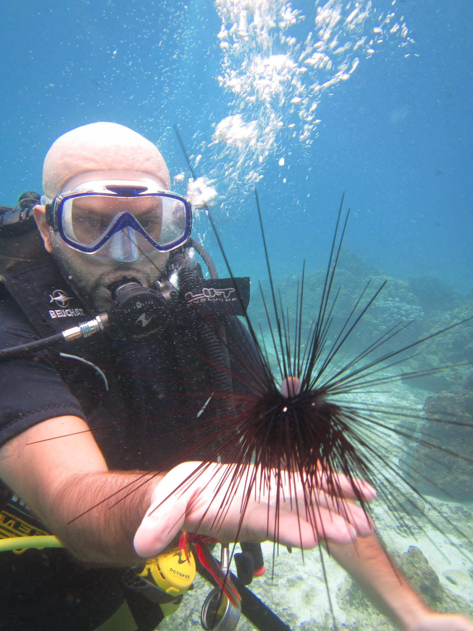 DSD diving tours in Phuket