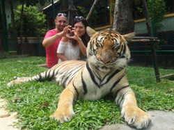 private city tours in Phuket