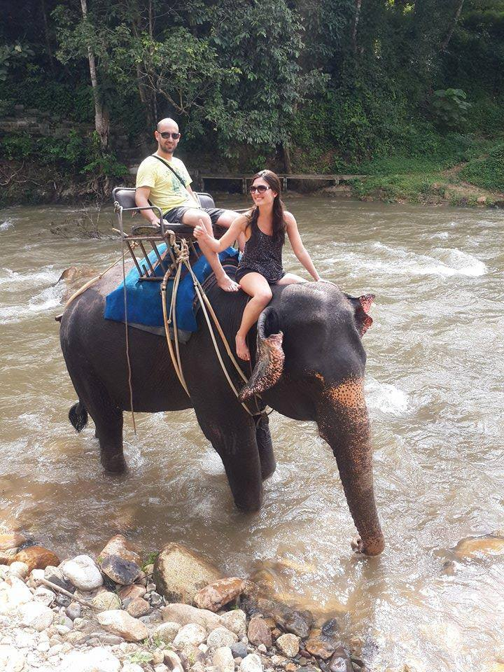 elephant riding next to river phuket
