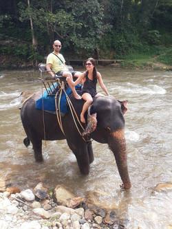 Safari Tour in Phuket