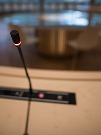 Audio Salle des Conseils