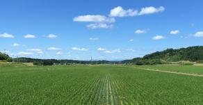 ケイスリー、農林水産省と新規就農者増加に向けたソーシャル・インパクト・ボンドの導入可能性調査を開始