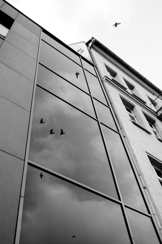 STREET_10.1.21_berlin-23 Kopie.jpg