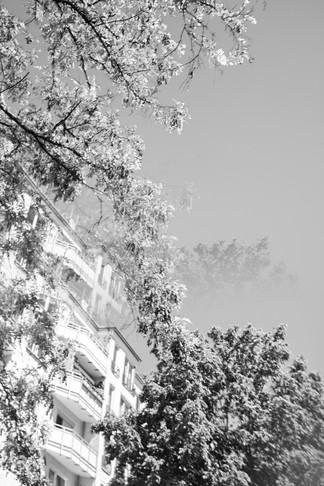 street_distortion-3 Kopie.jpg