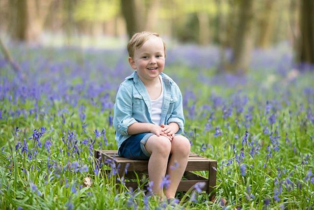 Bluebell Mini Sessions Sunday 22nd April