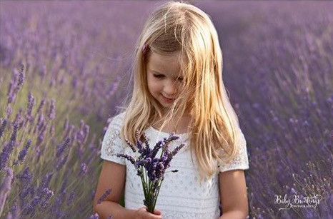The_lavender_is_the_perfect_backdrop_to_
