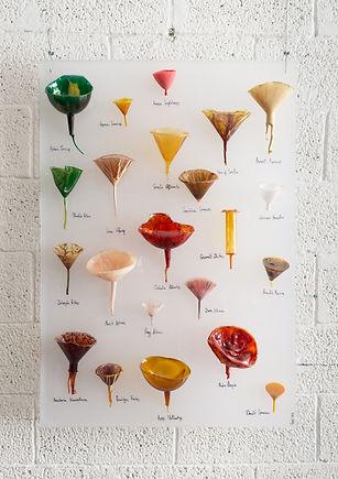 funnel chart #1