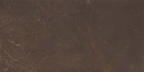 Настенная Marble Marron 249х500