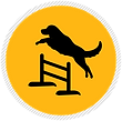 Agility-Icon.png