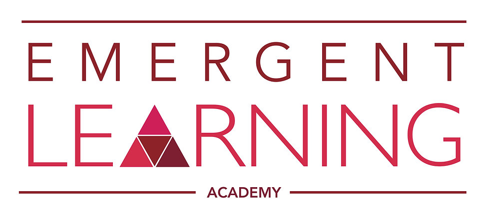 Emergent-Academy-large.jpg