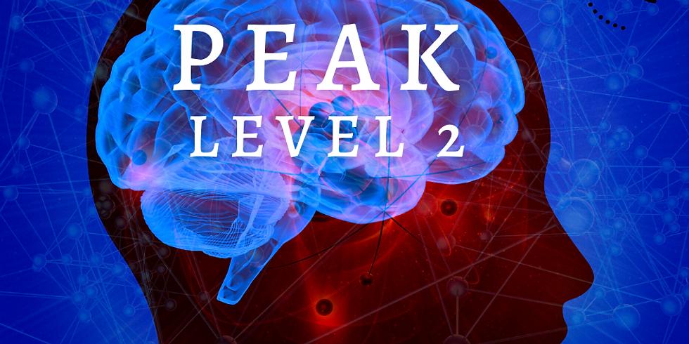 PEAK Level 2