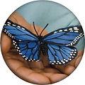 AIM butterfly circle.JPG