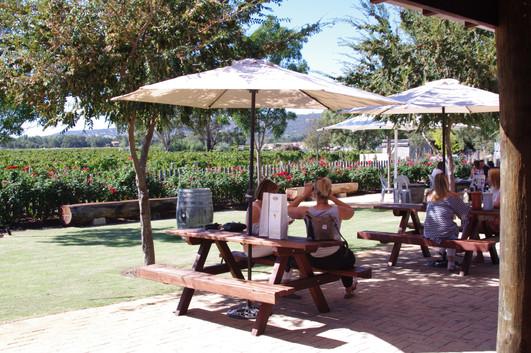 Gardens and vineyard