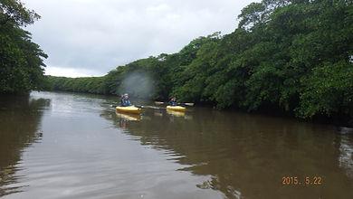 降雨後のピナイ川