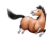 Pferd zurueckschauend.jpg