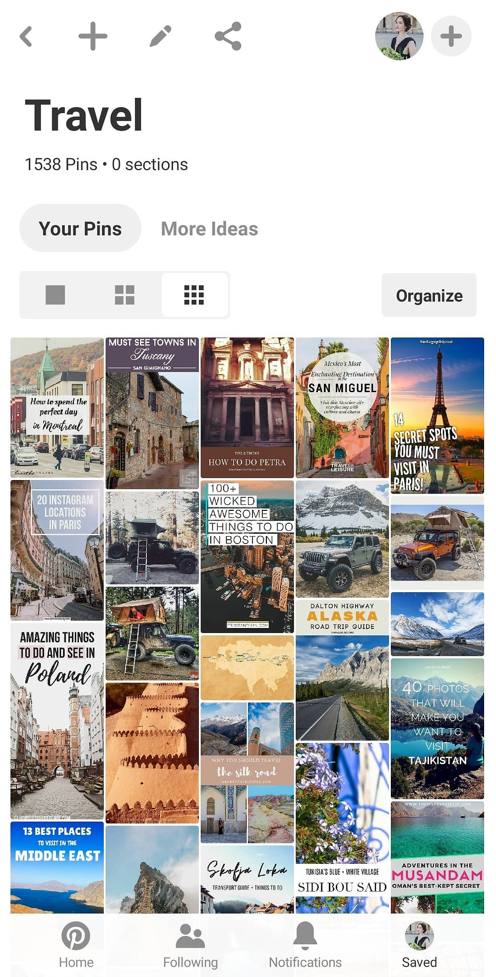 A screenshot of Shots Of Trillium's Pinterest Page for Travel