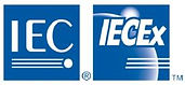 IEXEx logo.JPG