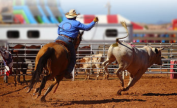 rodeo action_333959849.jpg