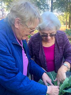 Gardening at Bob Hope Village