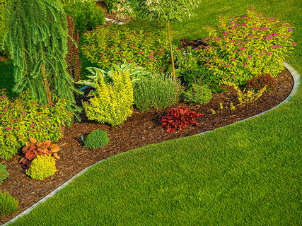 Add mulch or pine straw to your flower beds.
