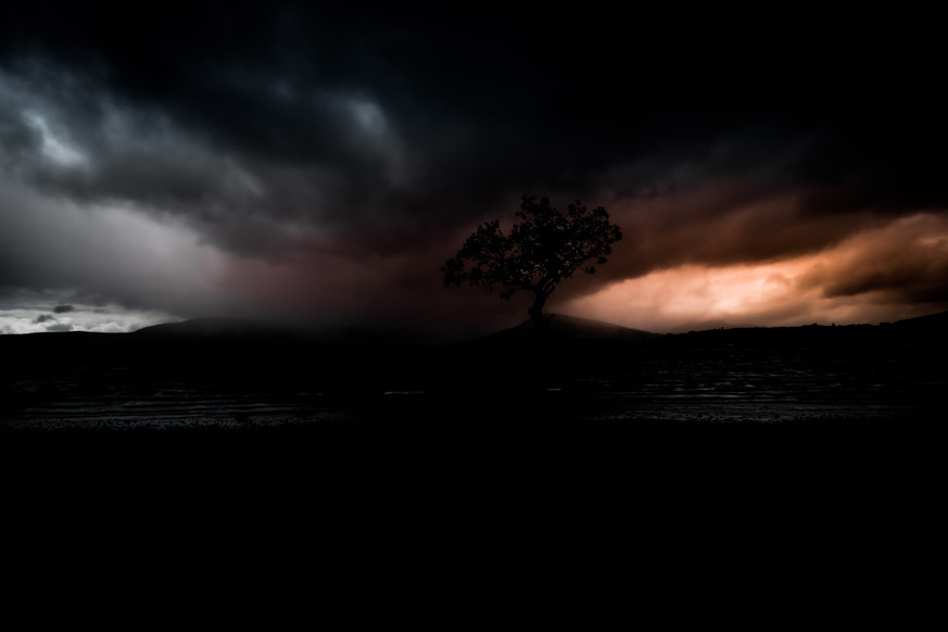 The Tree in darkness, Milarrochy Bay.