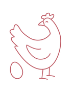 huhn transparent-19.png