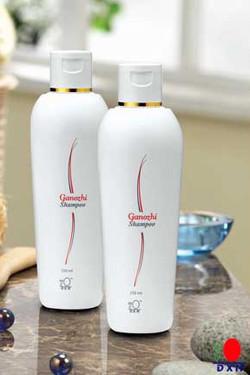 Shampoo Ganozhi