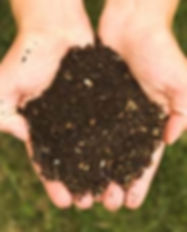 hand with compost.jpg
