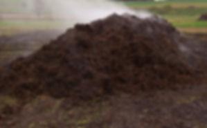 compost-pile_edited.jpg
