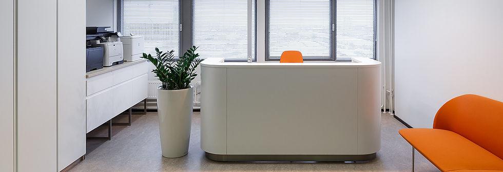 фитодизайн озеленение растения в офис