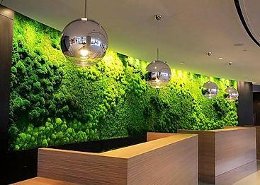 мох фитостена из мха стабилизировфитодизайн озеленение растения в офис фитостена панель из мха мох искусственный