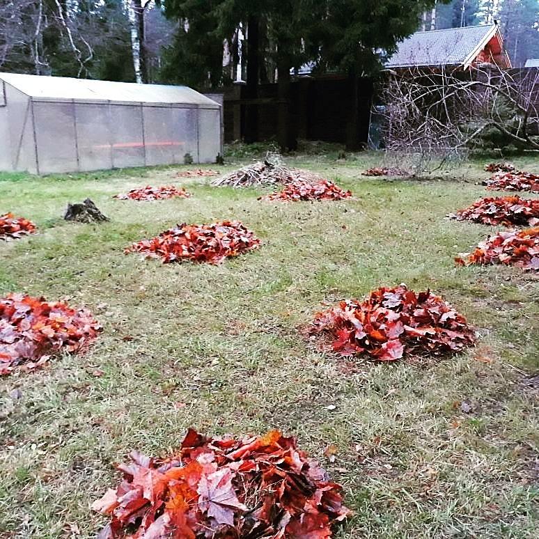 уборка садового участка