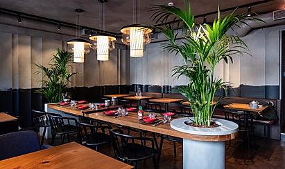 озеленение ресторана.jpg