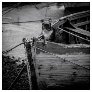 Cimetière de bateaux, 01
