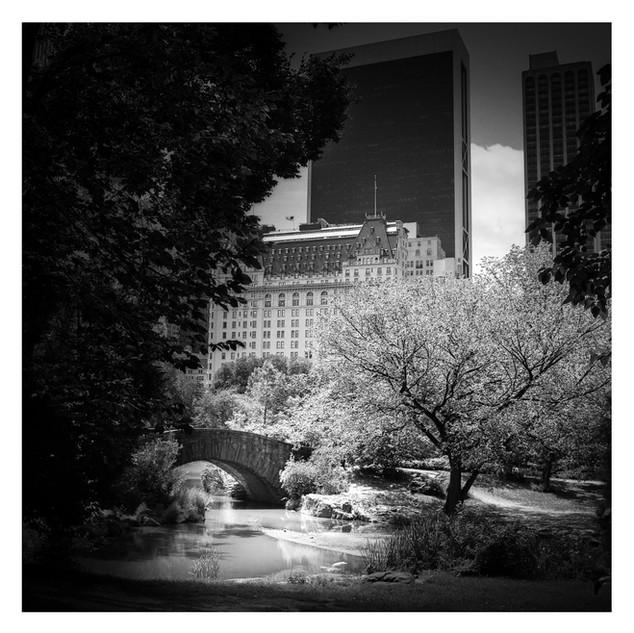 Central Park, 02