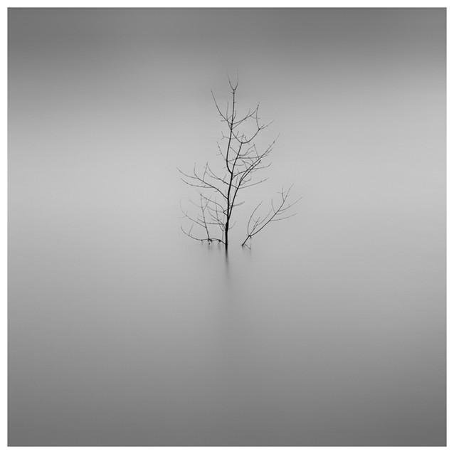 Solitude 03