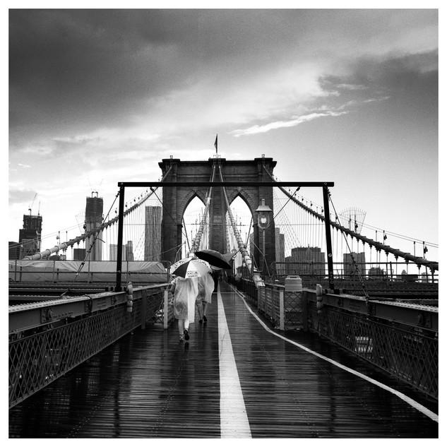 Pont de Brooklyn, 02