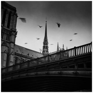 Cathédrale Notre-Dame de Paris, 01