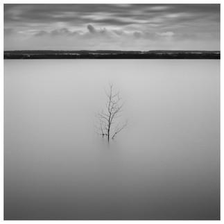 Solitude 02