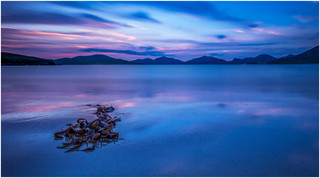 Harris Afterglow