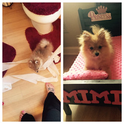 Mimi-New York-April 2015