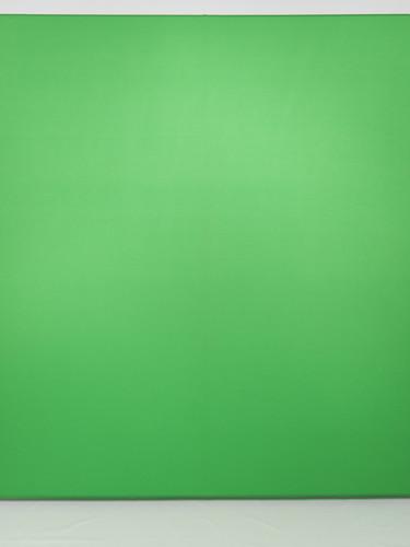 Greenscreen.jpg