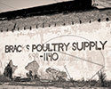 Bracks Poultry Samson, Al