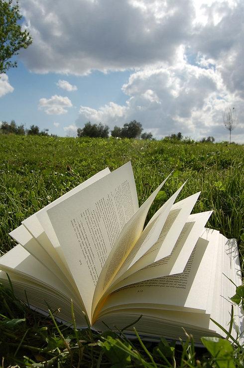 book in field.jpg