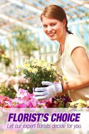 Florist's Choice Vase Arrangement