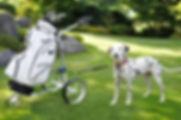JuCad vodítko pro psa