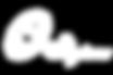 Skytone Logo