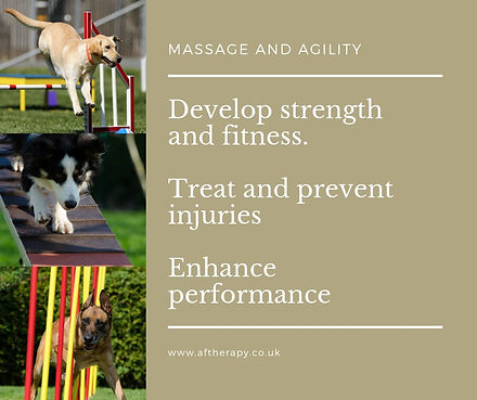 Develop strength and fitness. Treat and