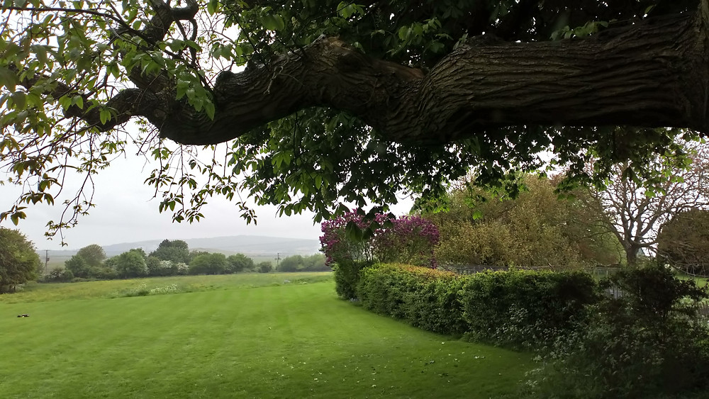 View from Virginia Woolf's writing hut