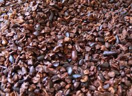 El Cacao como píldora para la salud